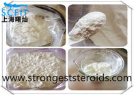 Cutting Testosterone Phenylpropionate Test Pp Hormone 99.5% Purity 1255-49-8