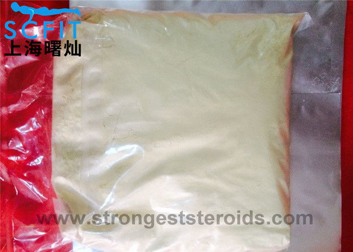 Oral Anabolic Steroids powder 99.9% 4 - Chlorodehydromethyltestosterone CAS 2446-23-3 For Mass Muscle