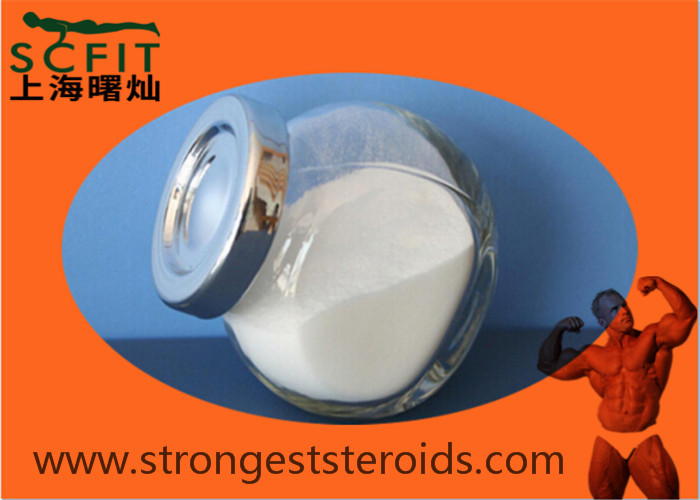 USP Standard Levonorgestrel  White Powder Anti Estrogen Steroids For Contraception