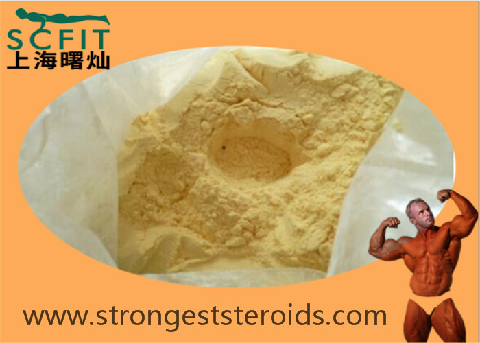 Parabolan 99% Healthy Light Yellow Trenbolone Steroids Powder  Tren Hexahydrobenzylcarbonate