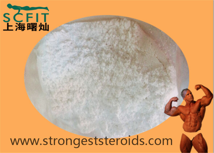 White Cutting Cycle Bodybuilding Steroid Estrone 99% Estrone 53-16-7 For  Females